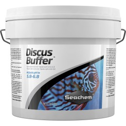 Discus Buffer 4 Kgs