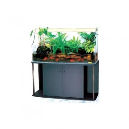 Acuario Aqua Garden