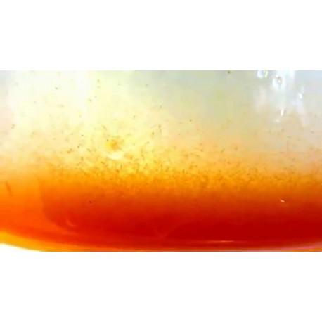 Nauplios de Artemia recien eclosionados 90 ml