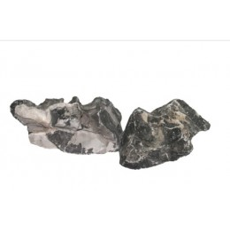 Roca Tsing Lung Seiryu black