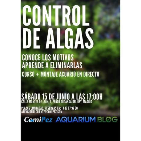 Workshop Comipez Alvaro