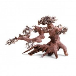 Raíz Bonsai Small
