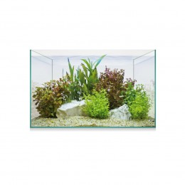 AQUASCAPE BASIC 8